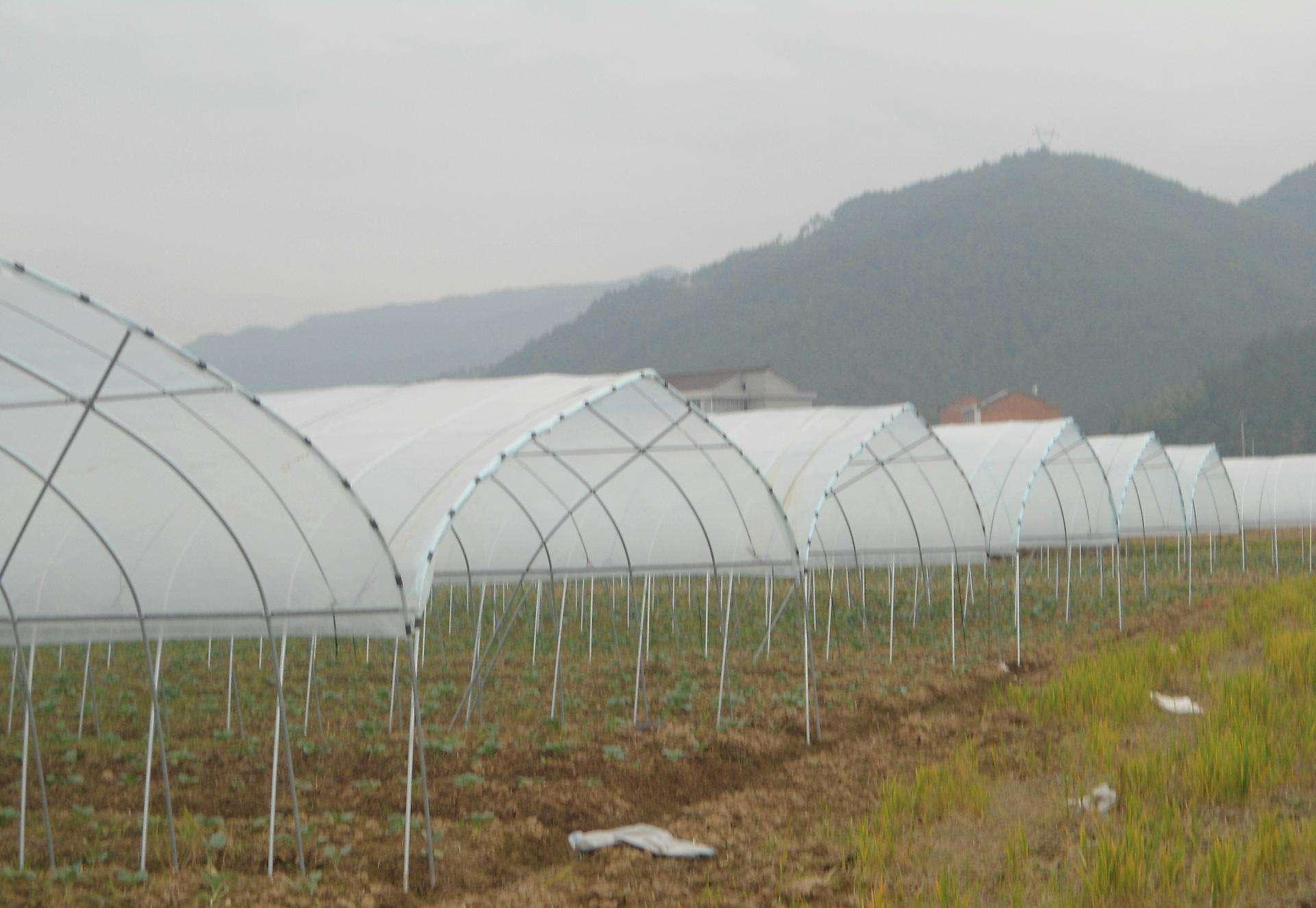 蔬菜溫室大棚一般用什麽規格的管?