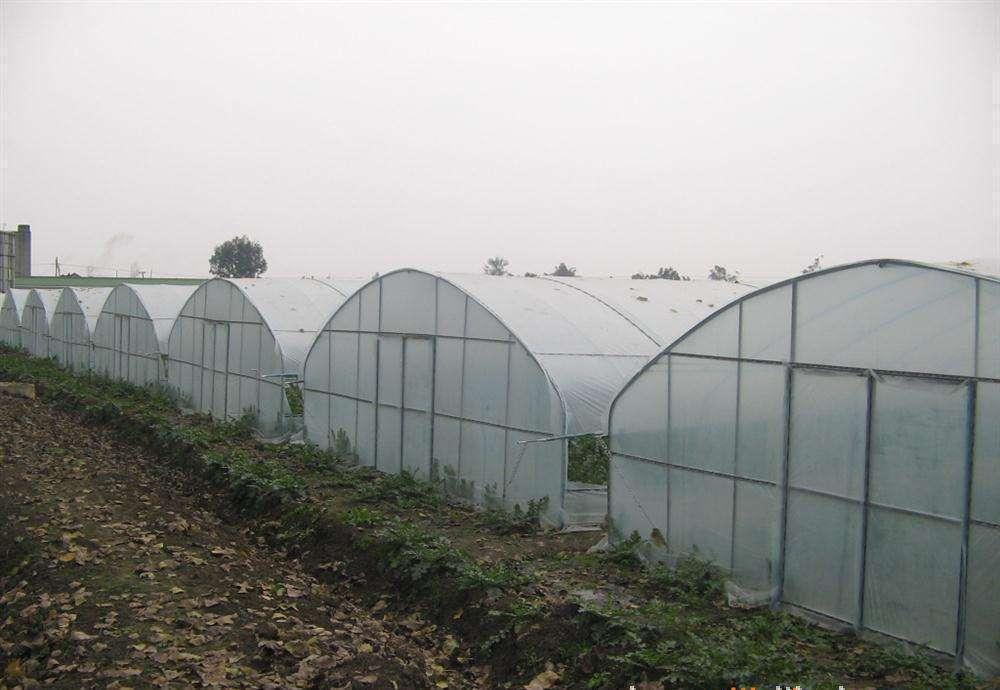 如何解決冬季溫室大棚的保溫問題